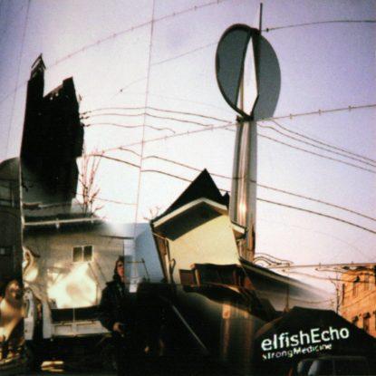 Elfish Echo - Strong Medicine - CD