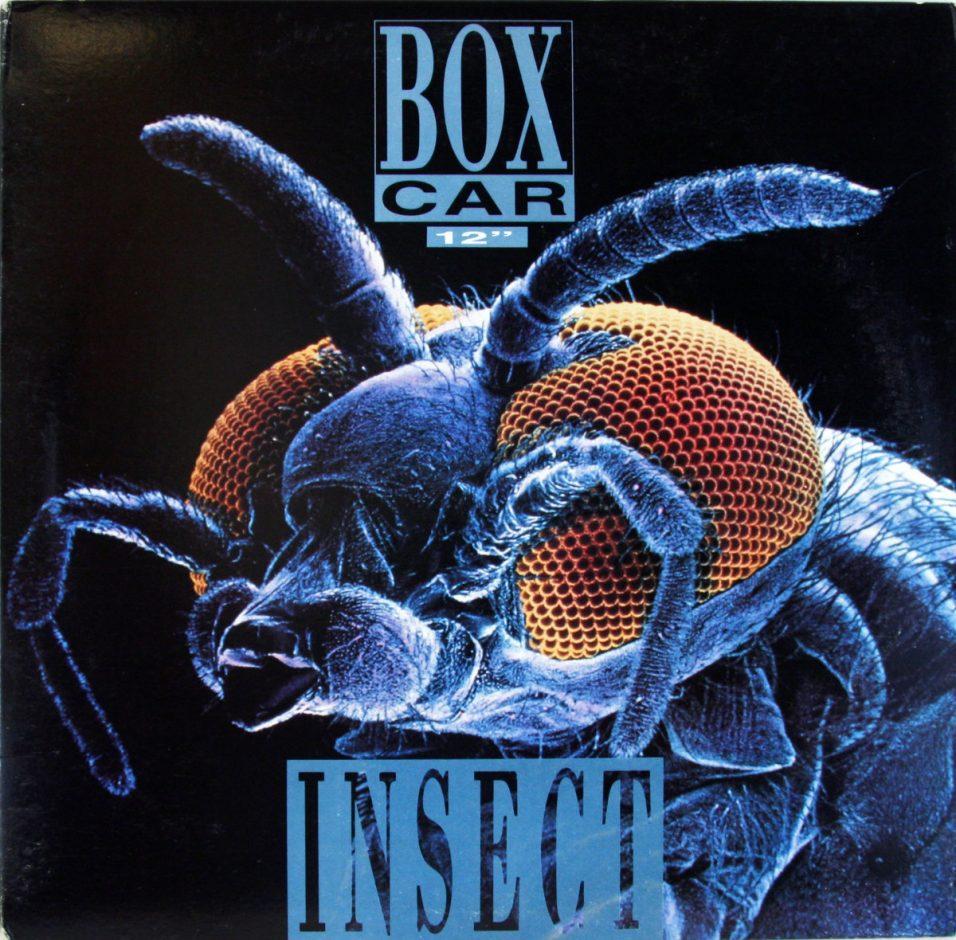 Box Car - Insect - Vinyl