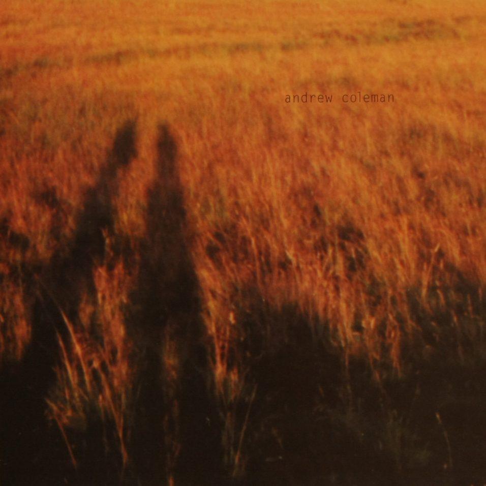 Andrew Coleman - Blame It On Adam - Vinyl