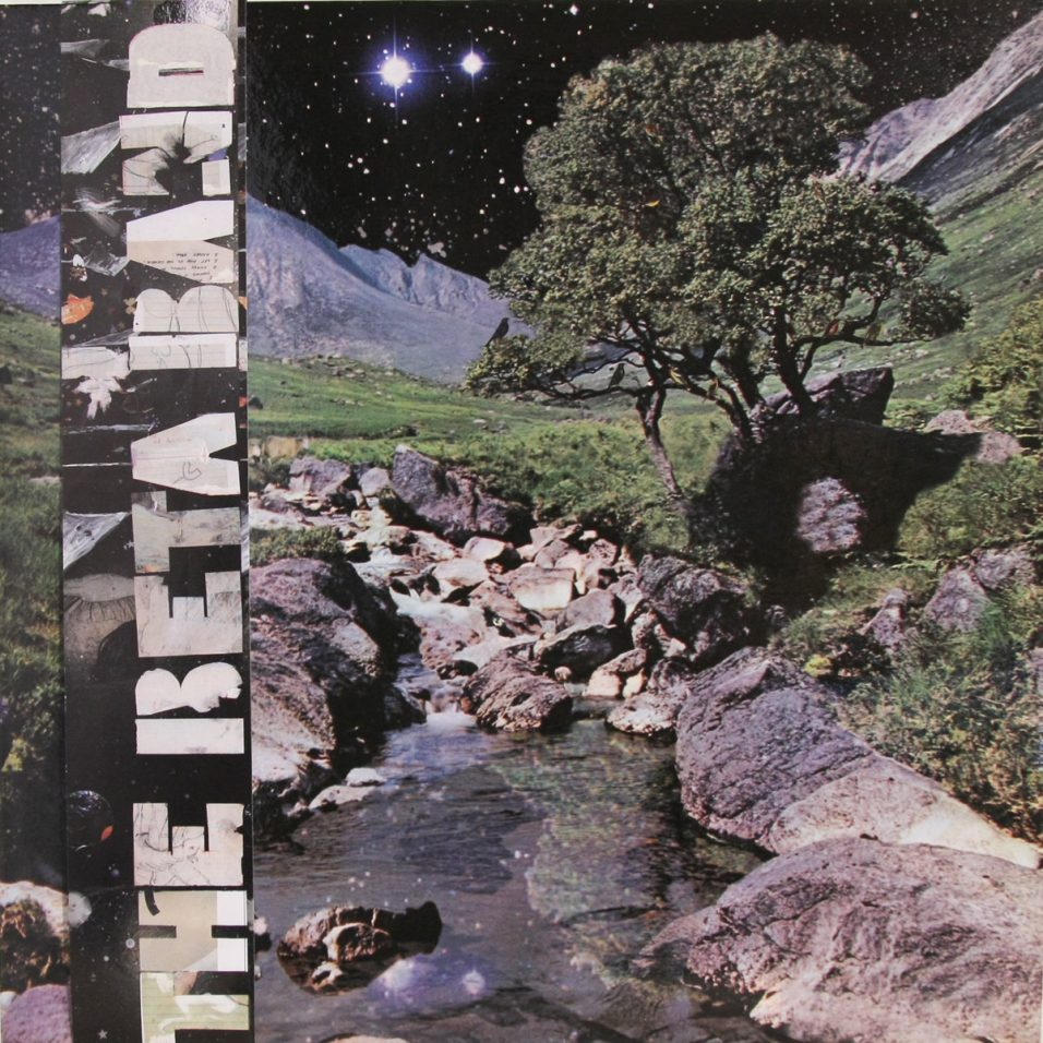 Beta Band - Vinyl